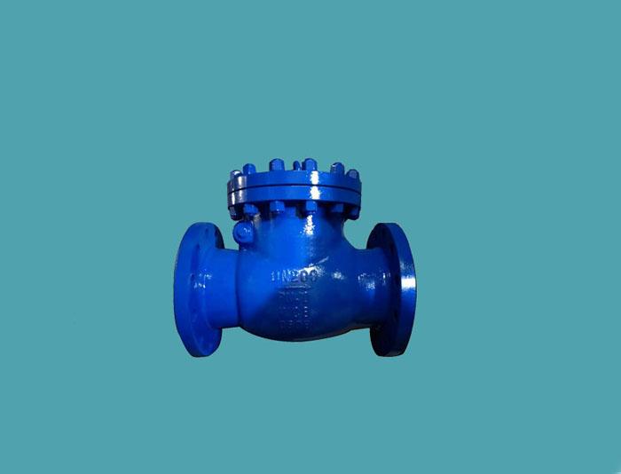 check valve